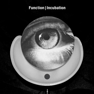 function-incubation-300x300