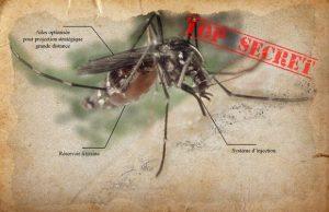 moustique-arme